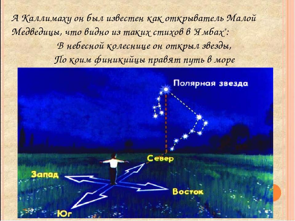 А Каллимаху он был известен как открыватель Малой Медведицы, что видно из так...