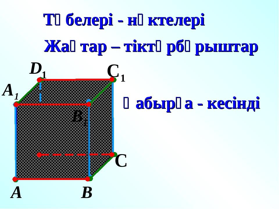 А В С D1 С1 Төбелері - нүктелері Жақтар – тіктөрбұрыштар Қабырға - кесінді А1...