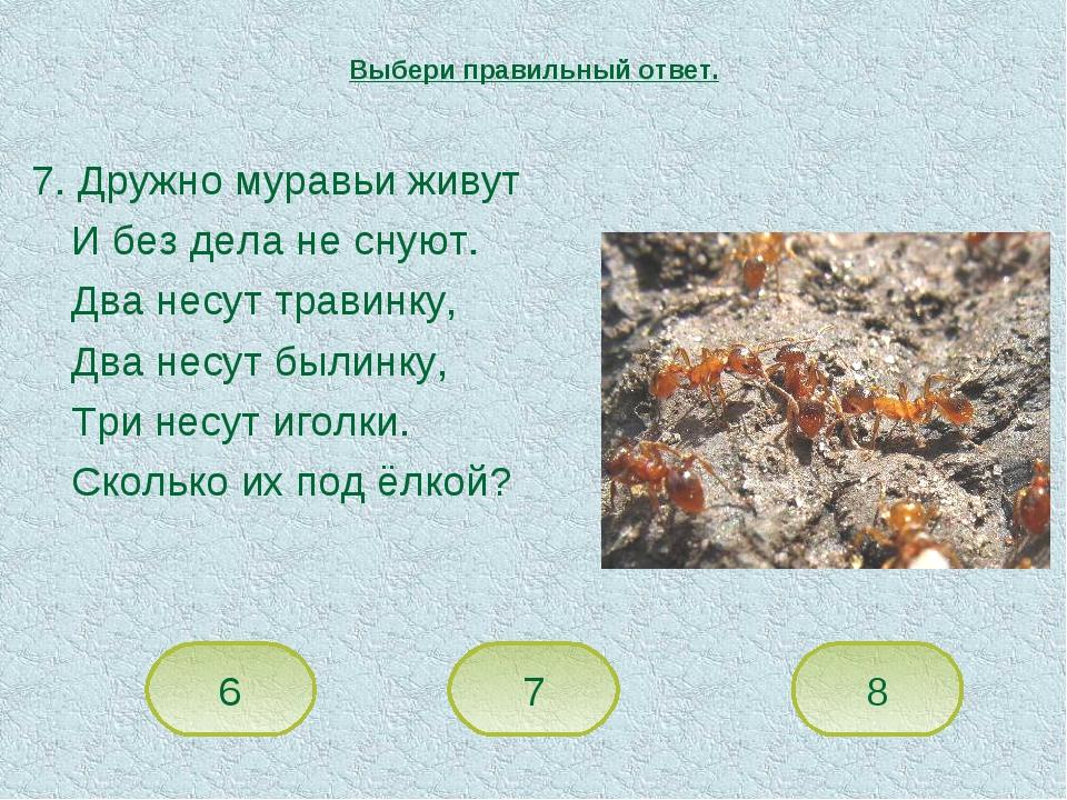 7. Дружно муравьи живут И без дела не снуют. Два несут травинку, Два несут бы...