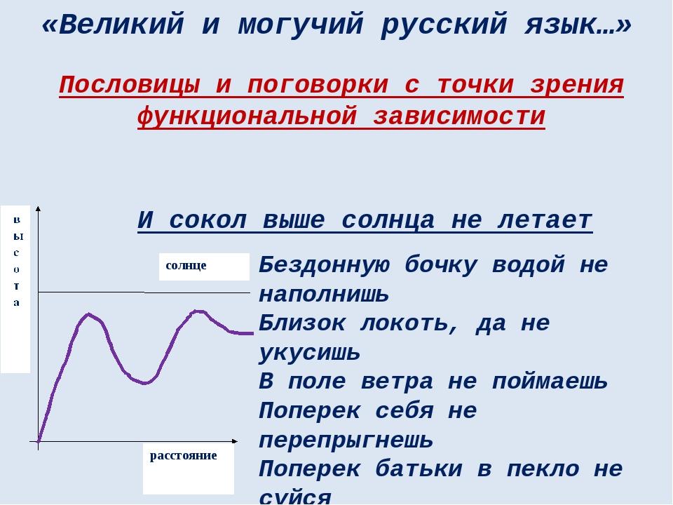 «Великий и могучий русский язык…» И сокол выше солнца не летает Бездонную боч...