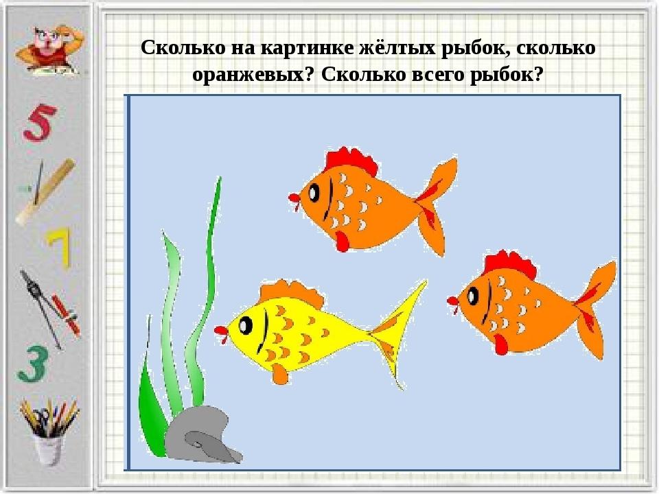 Сколько на картинке жёлтых рыбок, сколько оранжевых? Сколько всего рыбок?
