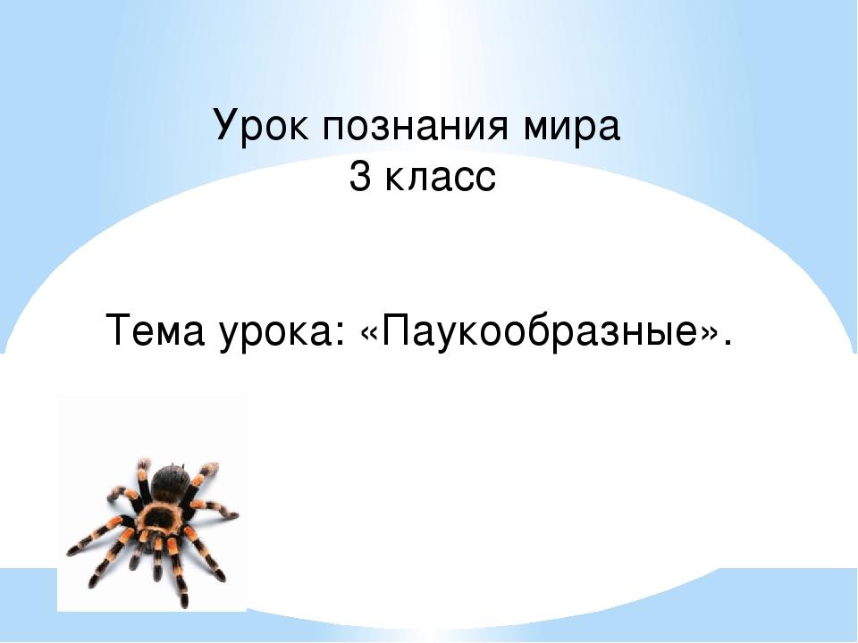 Урок познания мира 3 класс Тема урока: «Паукообразные».